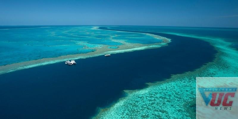 Biển Airlie, Whitsundays, Queensland thích hợp để tham gia các hoạt động thể thao trên biển như chèo thuyền, lặn biển… Nhiệt độ 19-26 độ C của vùng biển Queensland giúp nơi đây trở thành điểm đến yêu thích nhất mỗi khi xuân về (tháng 10). Ảnh: Cruise Whitsundays.