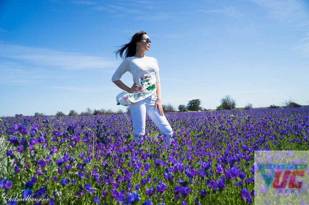 2 - Những cánh đồng hoa cỏ dại đẹp ngất ngây tại bang Victoria