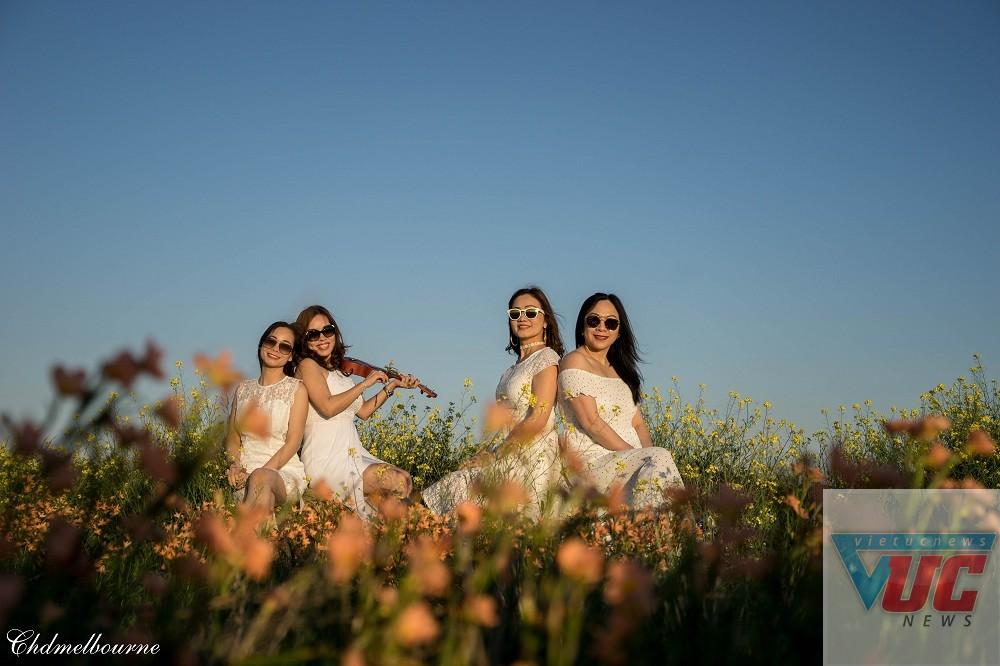42 - Những cánh đồng hoa cỏ dại đẹp ngất ngây tại bang Victoria