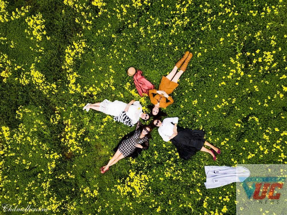 5 - Những cánh đồng hoa cỏ dại đẹp ngất ngây tại bang Victoria