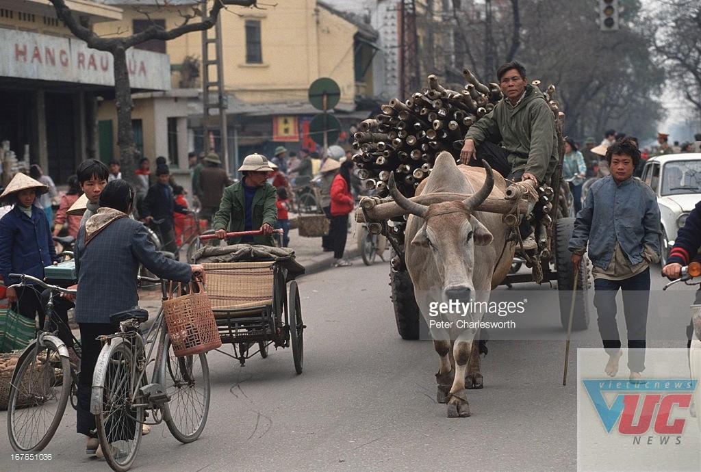 Một chiếc xe bò trên phố Lê Duẩn, gần chợ Cửa Nam. Đây là phương tiện vận tải phổ biến ở Hà Nội đầu thập niên 1990.