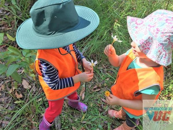 Học sinh cùng nhau hái hoa bắt bướm.