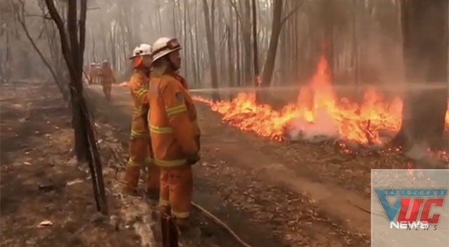 Cháy rừng vào mùa này được coi là nguyên nhân gây ra chất lượng không khí thấp.