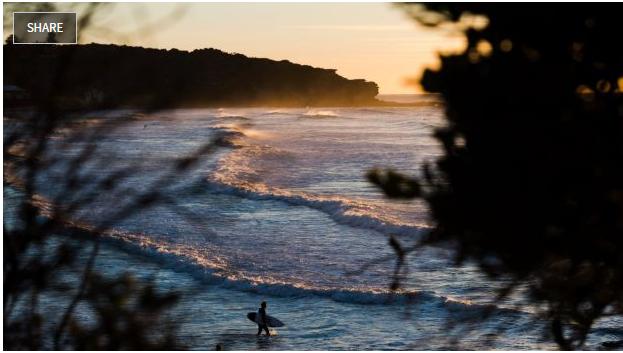Thời tiết của NSW sẽ thuận lợi cho những người thích đi biển
