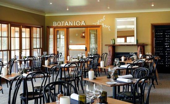restaurant botanica - 7 nhà hàng bạn nhất định phải thử trên Domain Rd, Melbourne